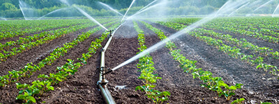 Landscape irrigation - ldsuv2 1 - Landscape irrigation