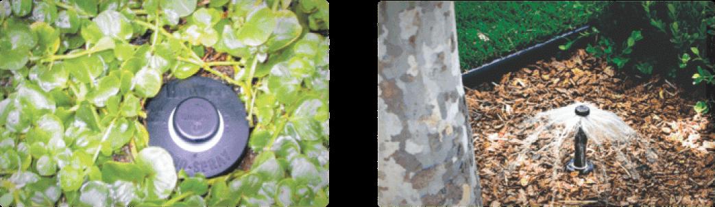 Landscape irrigation - landsaftsuvarma 0007 Layer 9 - Landscape irrigation
