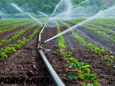 Дождевание, орошение, проектирование систем поливки, Shabran D При орошении некоторых видов растений метод дождевание считается более подходящим.